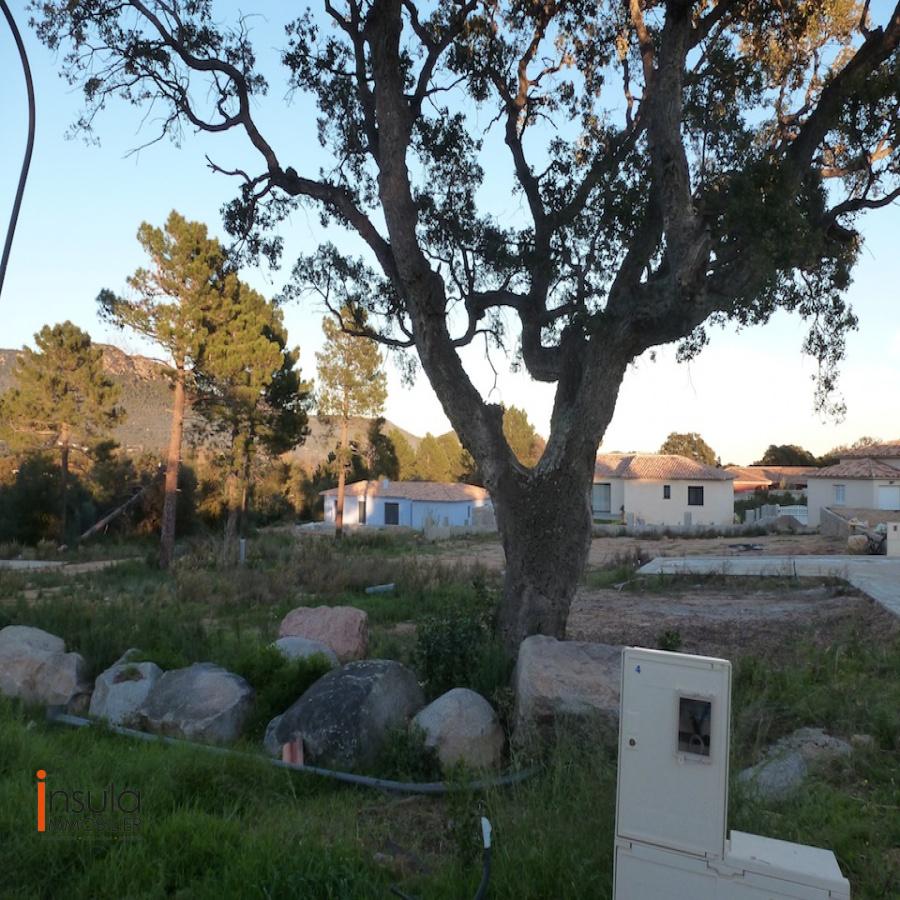 Image_14, Terrain, Ste lucie de porto vecchio, ref :110616-03-14