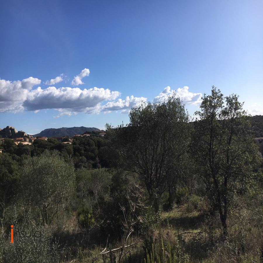 Image_4, Terrain, Pianottoli-Caldarello, ref :DA1507-20