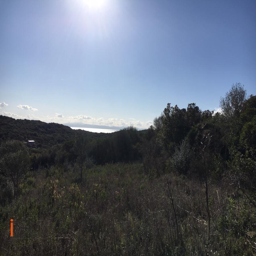Image_5, Terrain, Pianottoli-Caldarello, ref :DA1507-20