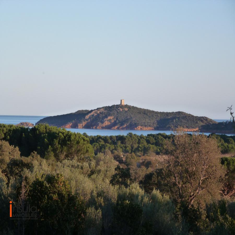 Image_21, Terrain, Ste lucie de porto vecchio, ref :11216-07-20
