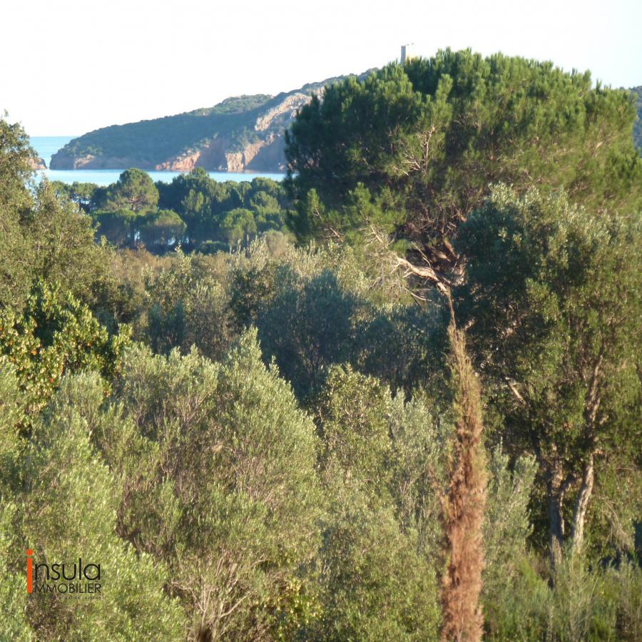 Image_2, Terrain, Ste lucie de porto vecchio, ref :11216-07-20