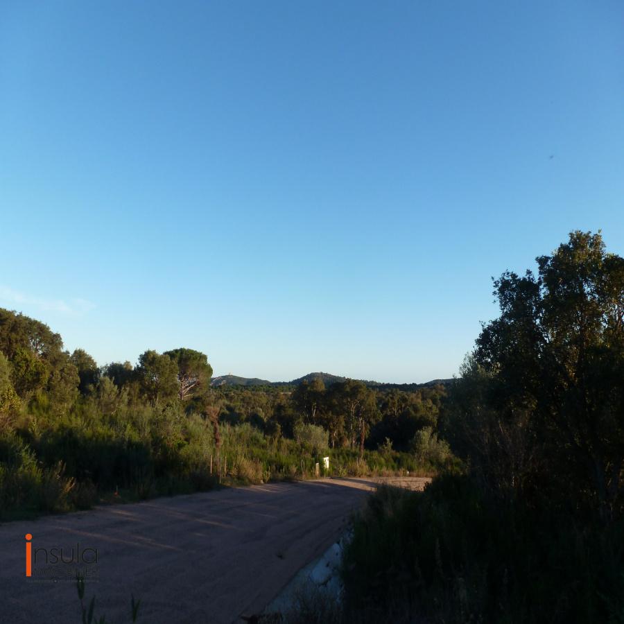 Image_9, Terrain, Ste lucie de porto vecchio, ref :11216-07-20